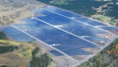 Located in Napanee, First Light I was SkyPower's first solar project and Canada's first fully operational solar park.