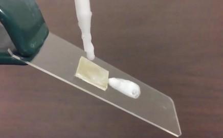 Ohio State University soap polypropylene