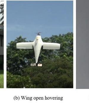 U-lion UAV