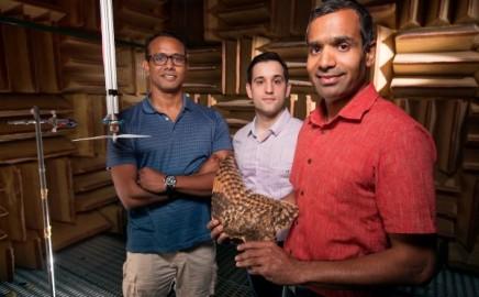 owl wing inspires next-gen aircraft design